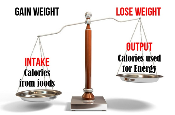 How-many-kilojoules-in-a-calorie